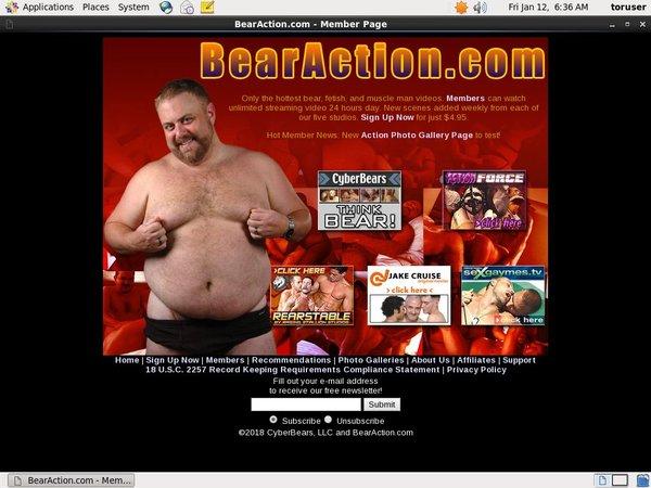 Bear Action Cc Bill