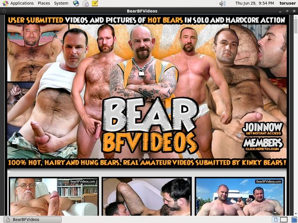 Bear BF Videos Direct Pay