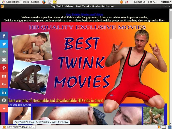 Working Besttwinkmovies.com Login