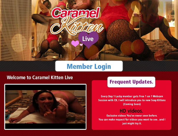 Caramel Kitten Live Exclusive Discount