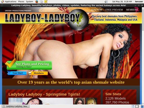 Ladyboy Ladyboy Paypal Signup